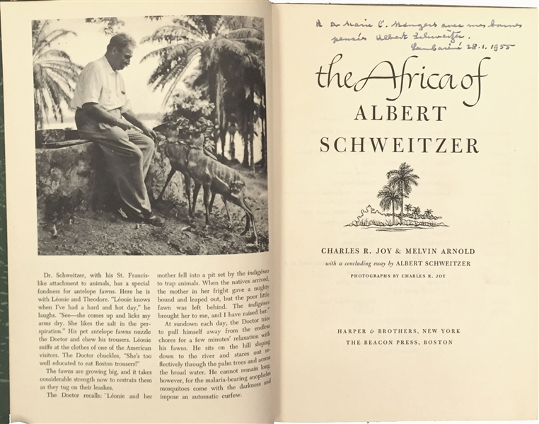 albert schweitzer essay Albert schweitzer essay award albert schweitzer essay award fall 2018 / spring and summer 2019 the albert schweitzer essay competition was created to raise.
